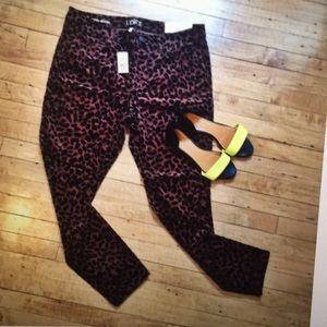 LOFT Pants - Ann Taylor Loft Velvet Leopard Skinny Pants